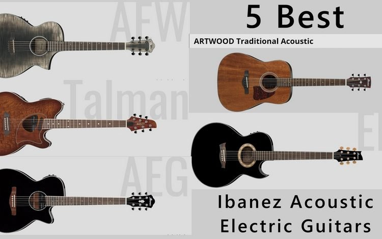 Ibanez acoustic electric guitars